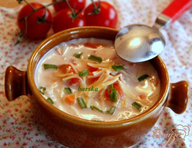 фото рецепта: Быстрый томатный суп с вермишелью