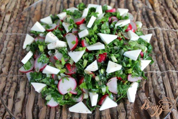фото рецепта: Салат с редисом и плавленным сыром