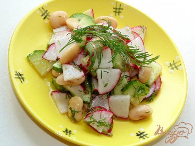 фото рецепта: Салат из редиса, свежего огурца и белой фасоли