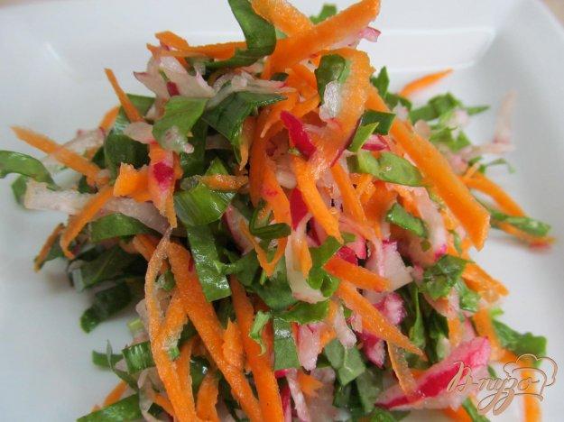 фото рецепта: Салат из редиса с щавелем и молодым чесноком