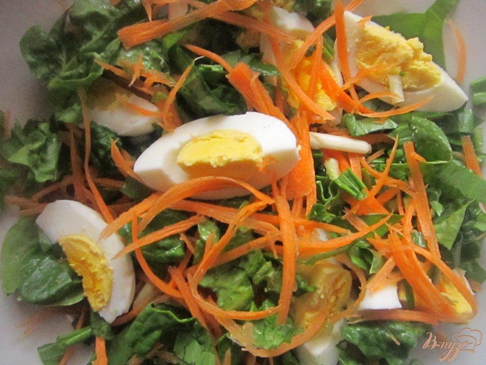 Салат из свежего шпината рецепты 196