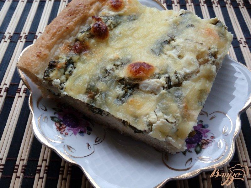 Пирог шпинат с творогом рецепты с пошагово