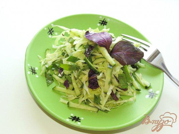 фото рецепта: Салат из молодой капусты со свежим базиликом и огурцом