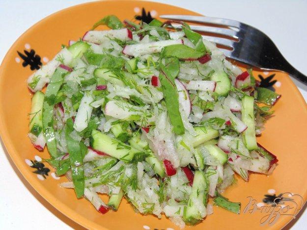 фото рецепта: Салат из редиса и белой редьки с мангольдом и огурцом