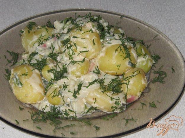 фото рецепта: Молодой картофель в сметанном соусе