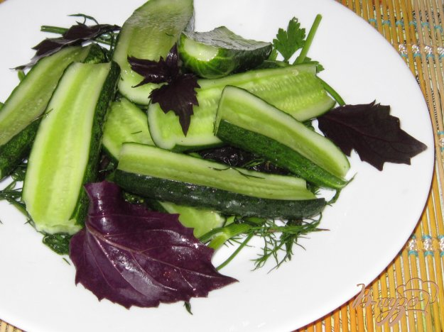 Рецепт огурцы с базиликом