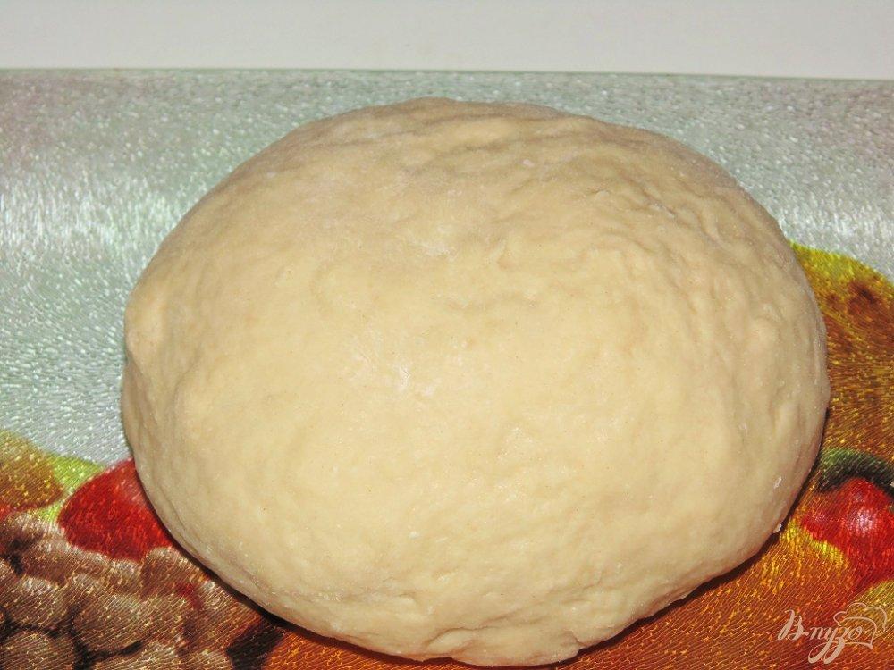 Дрожжевое тесто на молоке для пиццы рецепт с фото пошагово
