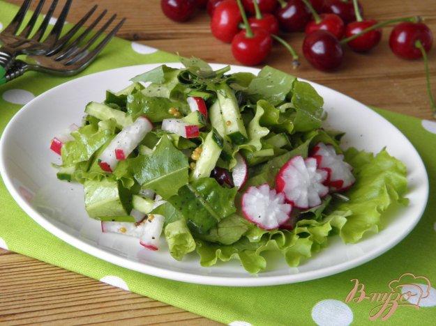 фото рецепта: Салат из листьев одуванчика с редисом и огурцом