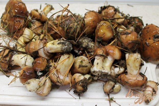 Жареные маслята с луком рецепт с фото