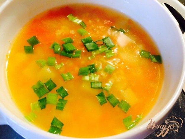 фото рецепта: Суп из индейки с пшеном для деток