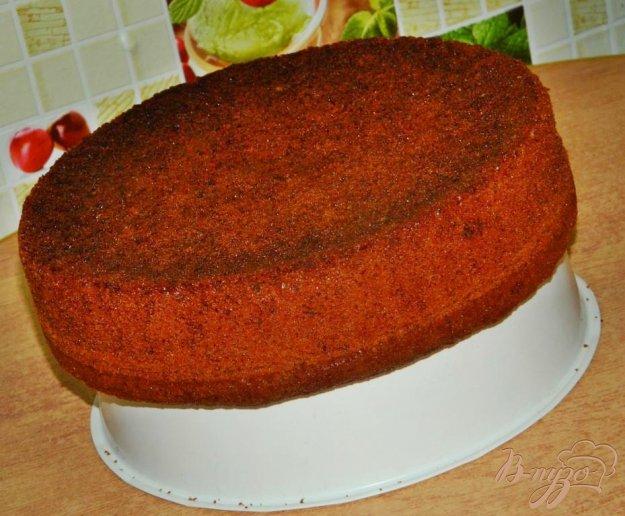 Творожный бисквит торта рецепт фото