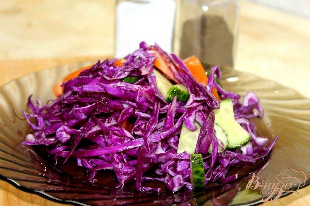 фото рецепта: Фитнес салат с краснокочанной капусты