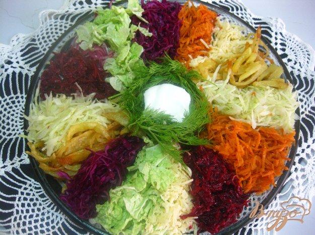 рецепт салата козел в огороде с мясом с фото
