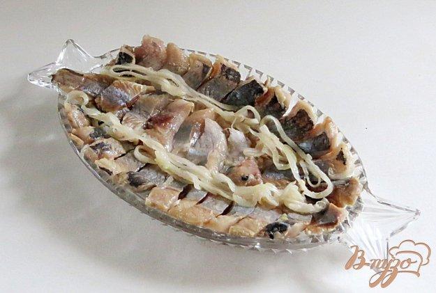 фото рецепта: Засолка сельди в домашних условиях