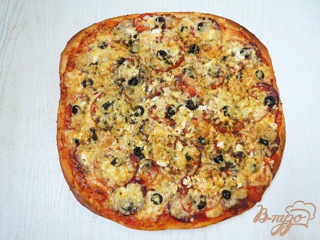 очень тонкое тесто для пиццы тут Регину Збарскую