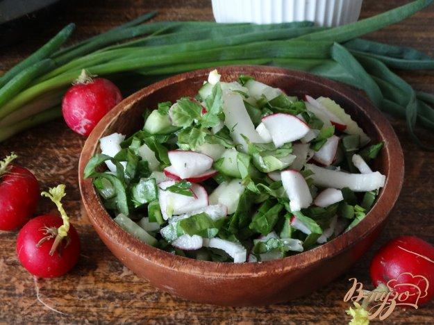 фото рецепта: Овощной салат со щавелем и сельдереем