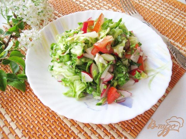 фото рецепта: Салат с редисом и помидором