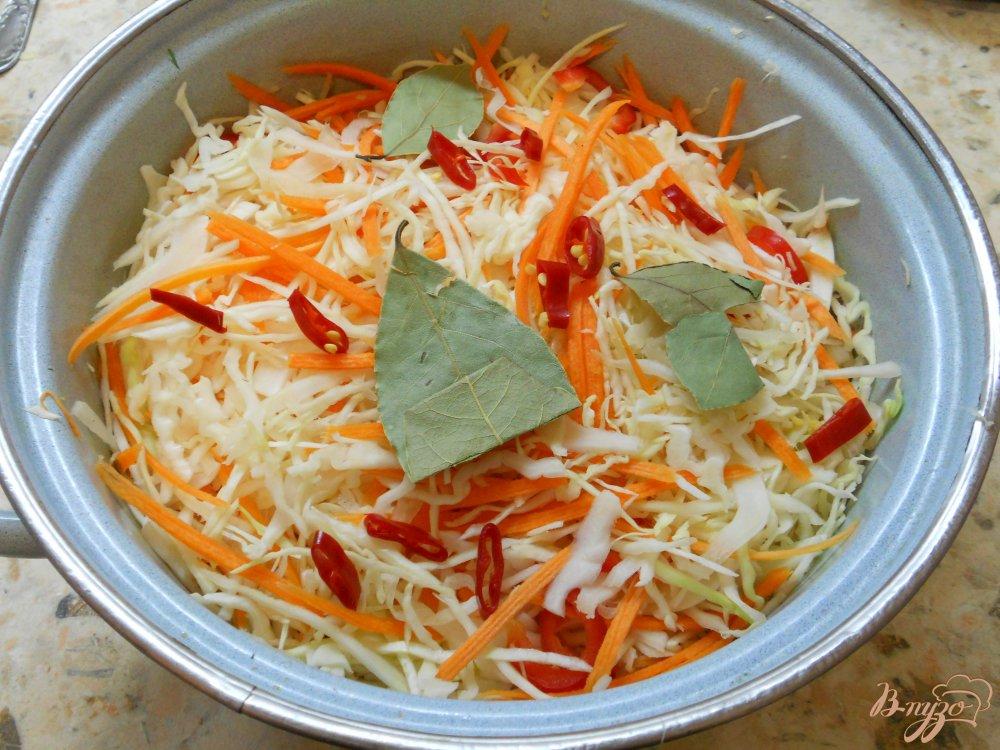капуста по корейски быстрого приготовления рецепт