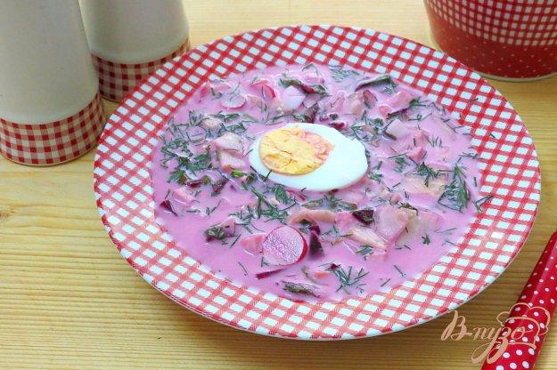 фото рецепта: Свекольник холодный со сметаной и щавелем