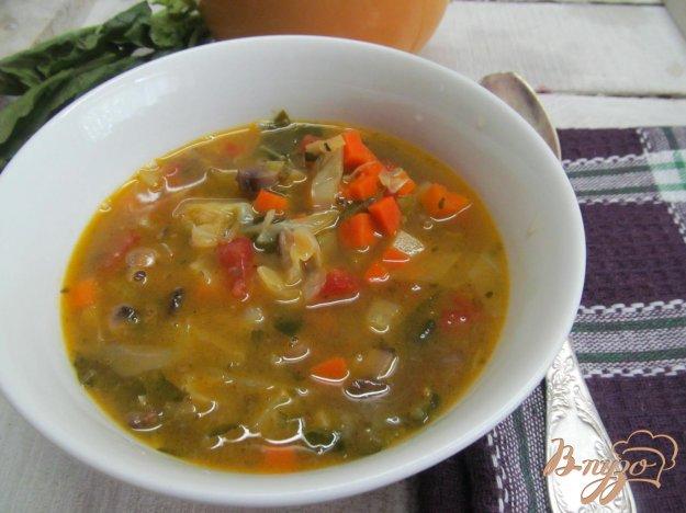 фото рецепта: Овощной суп на курином бульоне в азиатском стиле