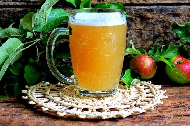 фото рецепта: Квас из яблочного сока