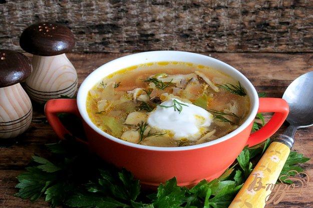 фото рецепта: Томатный суп с грибами и капустой