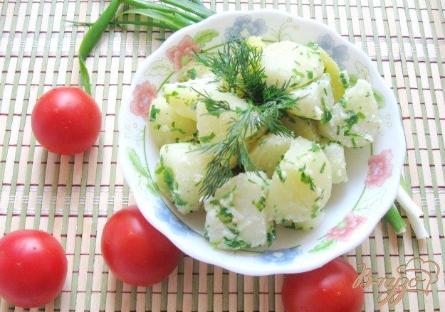фото рецепта: Отварной картофель с чесночной заправкой