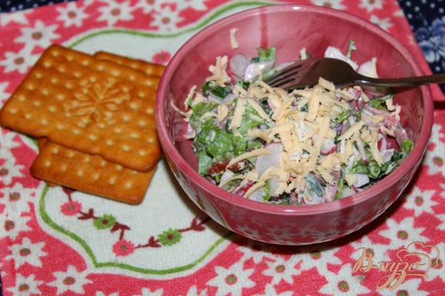 фото рецепта: Салат с редисом, копченой колбасой и зеленью