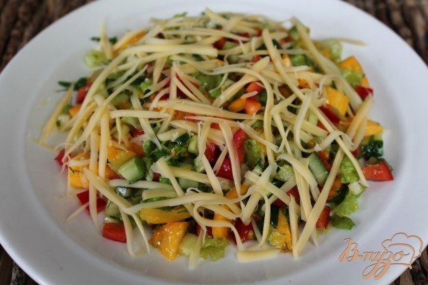 фото рецепта: Салат из помидоров с огурцом и перцем