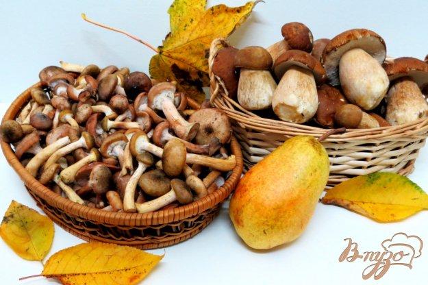 фото рецепта: Заготовка грибов на зиму