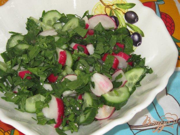 фото рецепта: Салат из щавеля с огурцом и редисом