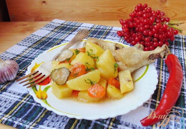 фото рецепта: Жаркое из курицы с маринованными огурцами