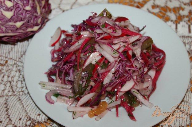 фото рецепта: Домашний салат с редькой, редисом и соленым огурцом