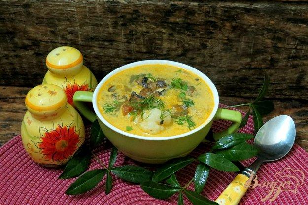 фото рецепта: Овощной суп с цветной капустой сметаной и грибами
