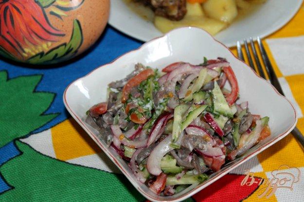 фото рецепта: Салат с куриными желудками, маринованным луком и помидорами