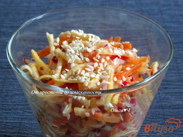 фото рецепта: Салат из репы, моркови и редиса (без масла)