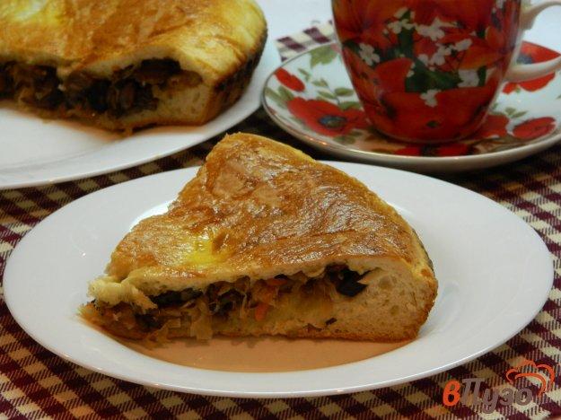 фото рецепта: Закрытый пирог с квашеной капустой и грибами