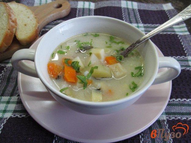 фото рецепта: Чорба из сезонных овощей с кефирной заправкой