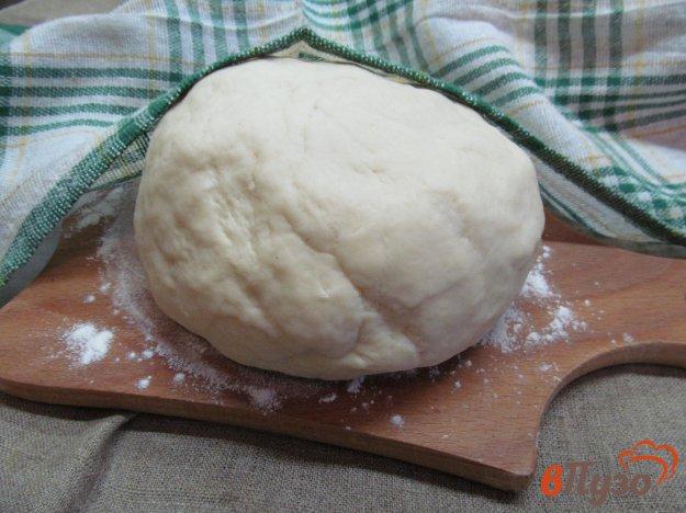 фото рецепта: Тесто для беляшей на кефире с содой