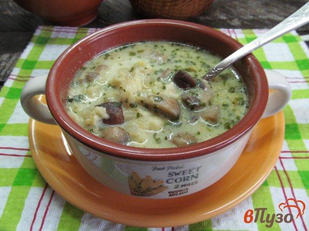 фото рецепта: Суп грибной с клецками