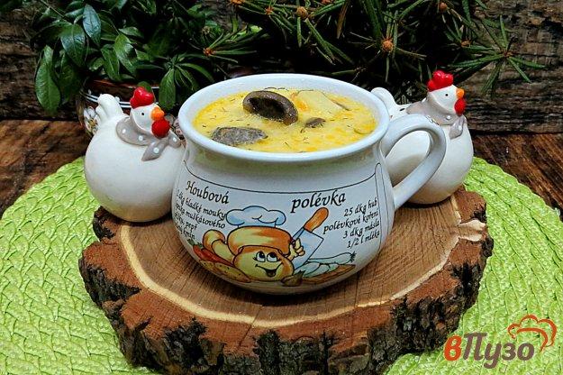 фото рецепта: Суп с солёными маслятими и плавлеными сырками
