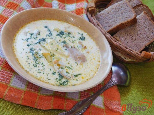 фото рецепта: Сливочный суп с курицей и грибами