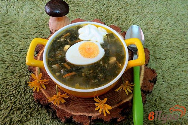 фото рецепта: Зелёный борщ с черемшой и щавелем