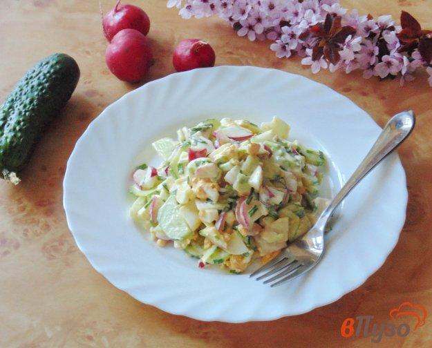фото рецепта: Салат с редисом и огурцом