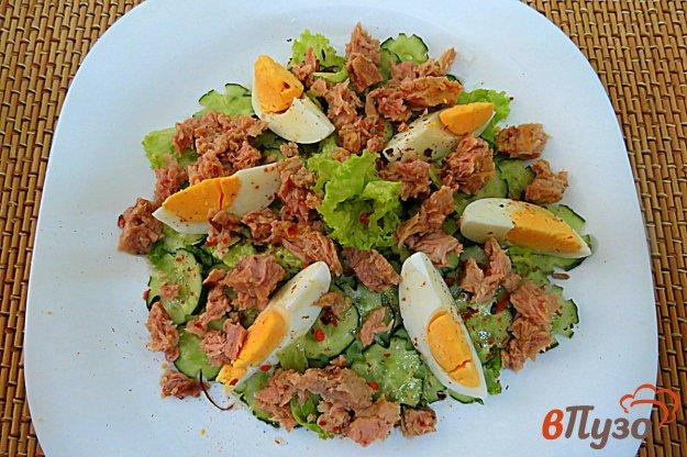 фото рецепта: Салат с тунцом, яйцом и огурцом