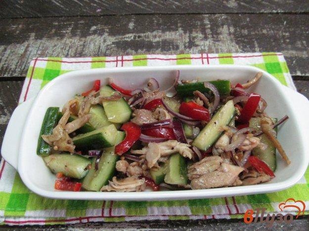 фото рецепта: Салат из огурцом и куриным мясом