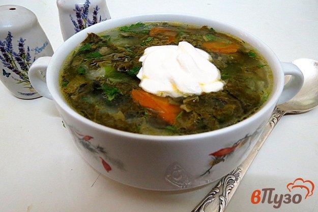 фото рецепта: Щи зелёные с капустой и щавелем