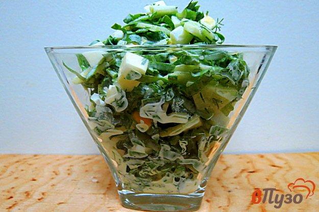 фото рецепта: Салат со щавелем, яйцом и огурцом