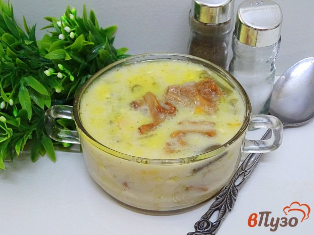 фото рецепта: Суп с лисичками, плавленым сыром и спаржевой фасолью