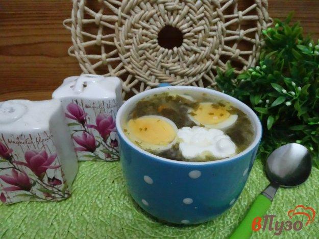 фото рецепта: Зелёный борщ с рисом и мороженым щавелем